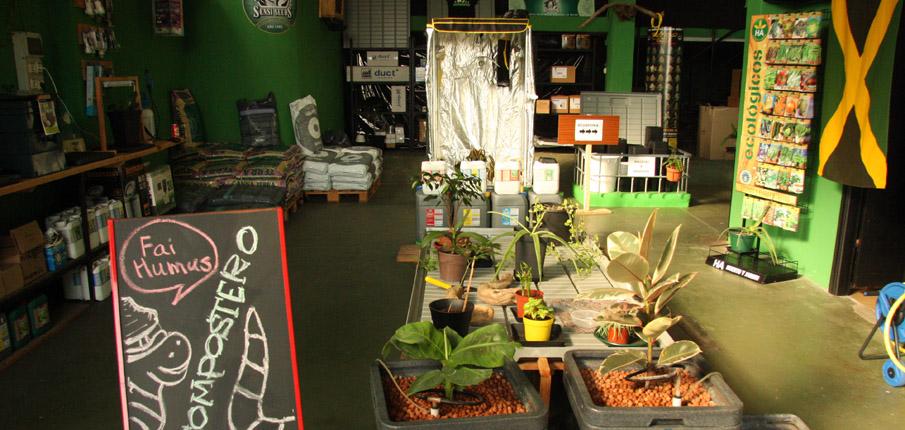 Grow shop pontevedra semillas de marihuana e informaci n sobre el cultivo de interior y de exterior - Semillas de interior ...
