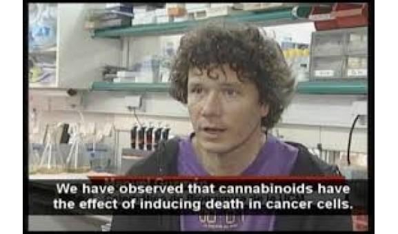 Manuel Guzman- Cannabinoides: del Laboratorio a la Clinica