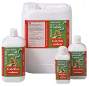 Natural Grow and Bloom Excellarator