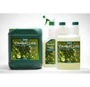 Cannacure